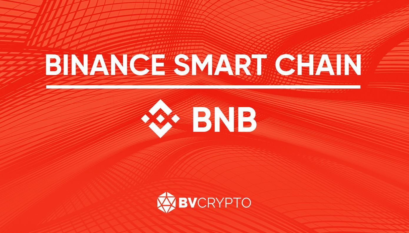 The Rise of BNB and Binance Smart Chain